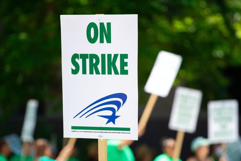 people-rallying-carrying-on-strike-signage-1094323-(2).jpg